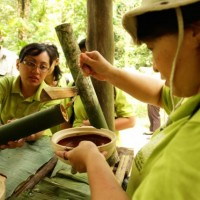 Bamboo Cooking